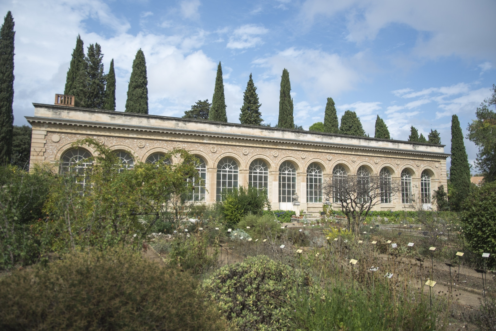 le jardin des plantes hier et aujourd 39 hui universit de montpellier. Black Bedroom Furniture Sets. Home Design Ideas