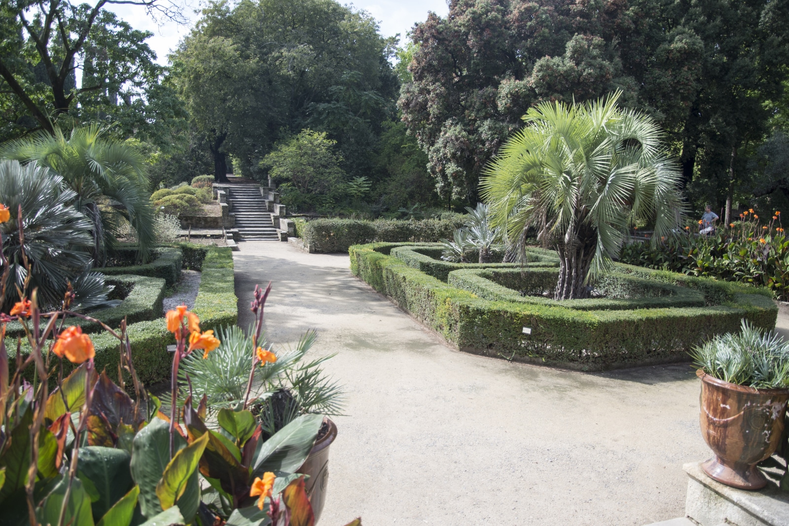 Programmation estivale du jardin des plantes universit for Application plan jardin