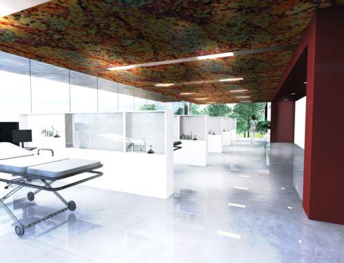 A Montpellier, un nouvel écrin pour la médecine