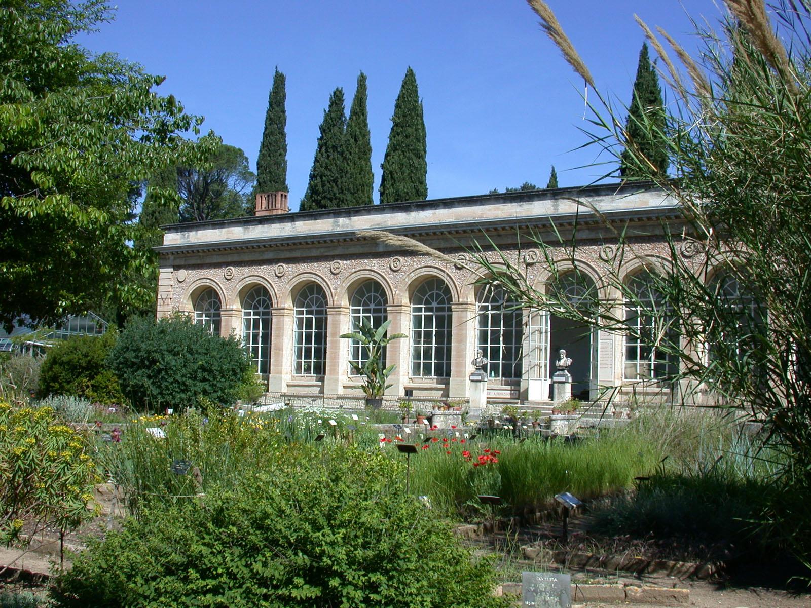 Conf rence le jardin des plantes et ses plantes - Le jardin des plantes montpellier ...