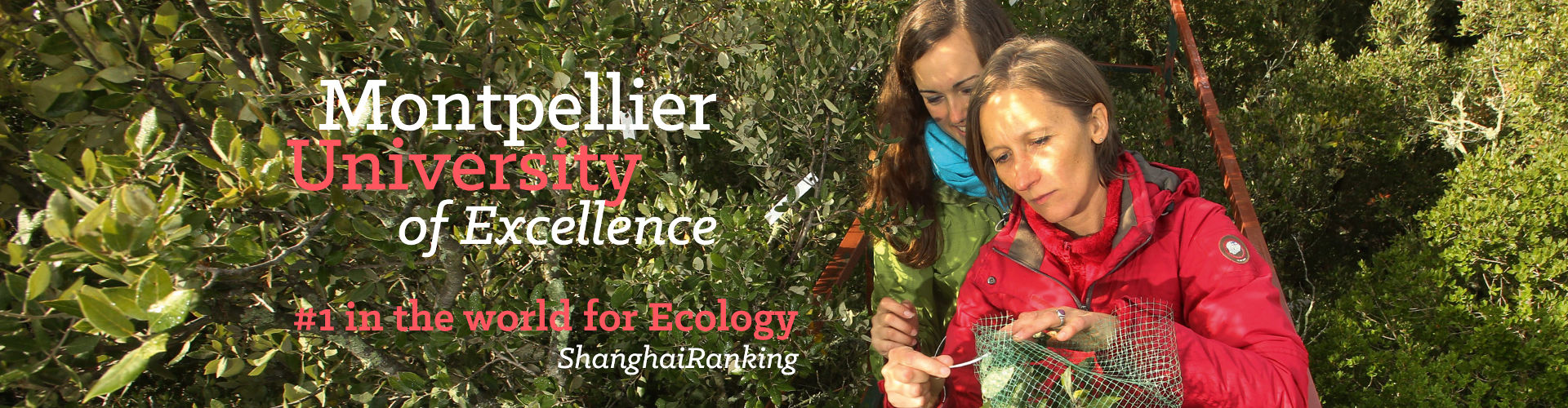 Montpellier University - First place in ecology - ShanghaiRanking