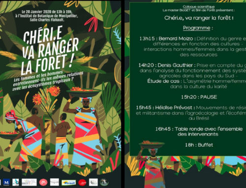 Colloque scientifique « Chéri.e va ranger la forêt ! »