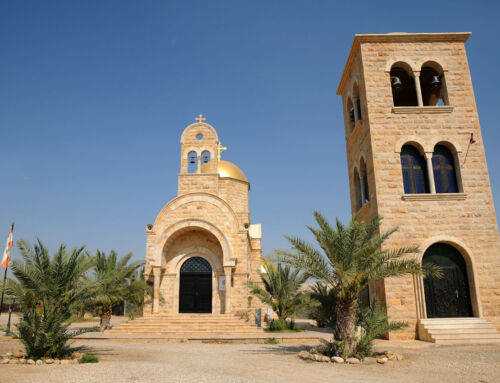 Debate: in the West Bank, the palm trees of discord